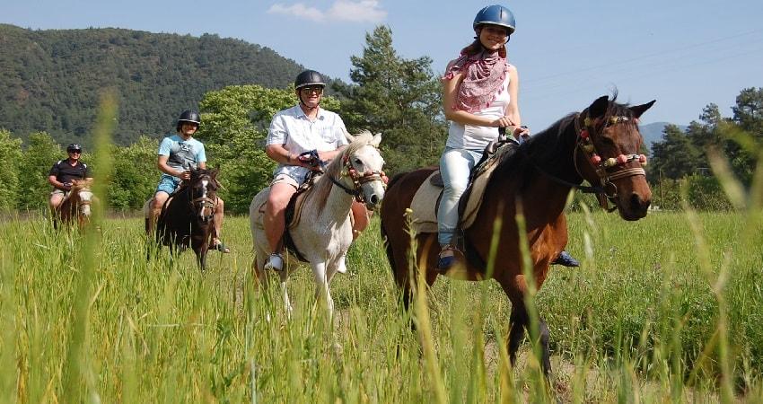 Прогулка на лошадях в Бодруме - Экскурсии в Бодруме - Turteka