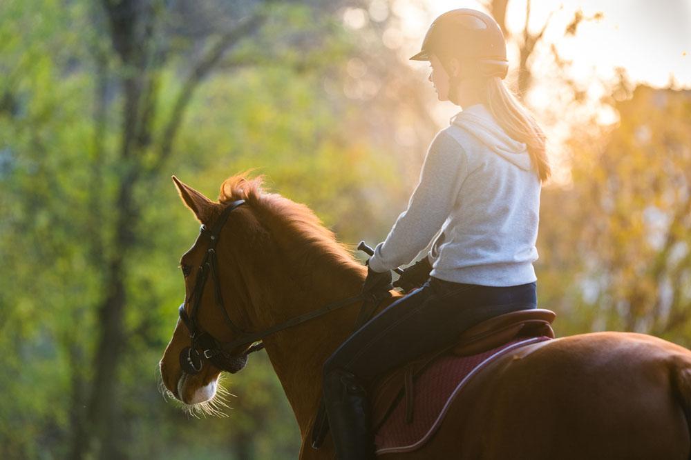 Прогулка на лошадях в Бодруме - Верховая езда - Цена и Отзывы