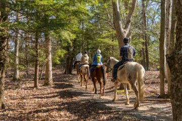 Сафари на лошадях в Фетхие - Верховая езда в Фетхие
