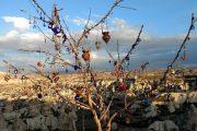 Красный тур в Каппадокии - Экскурсии в Каппадокии
