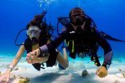 Дайвинг в Анталии - Погружение с аквалангом - Подводный мир