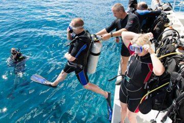 Дайвинг в Кушадасах - Погружение с аквалангом - Цена и Отзывы