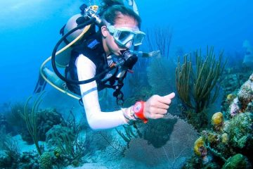 Дайвинг в Кемере - Погружение с аквалангом - Цена и Отзывы
