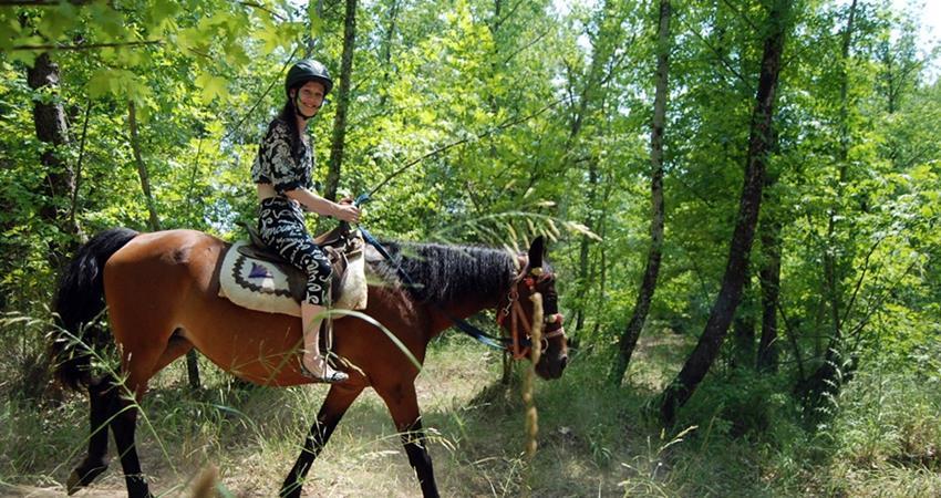 Прогулка на лошадях в Кемере - Программа тура - Цена и Отзывы
