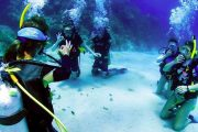 Дайвинг в Алании - Погружение с аквалангом - Turteka