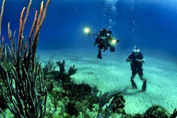 Дайвинг в Мармарисе - Удивительный подводный мир - Фото и Цена