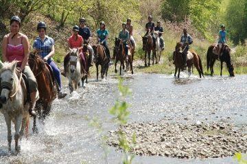Сафари на лошадях в Мармарисе - Ласковые животные - Фото и Цена