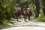 Прогулка на лошадях из Алании - Программа тура и инструктаж