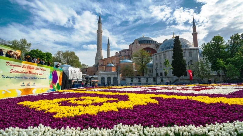 Стамбульский фестиваль тюльпанов