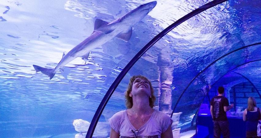 Экскурсия в аквариум Анталии из Алании - Фотографии и Цена